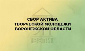 Сбор актива творческой молодежи Воронежской области